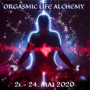 life-alchemy